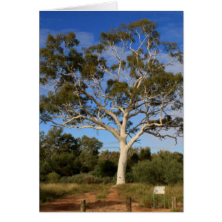De gomboom van het spook, Binnenland Australië Kaart