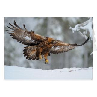 De gouden foto van Eagle Briefkaarten 0