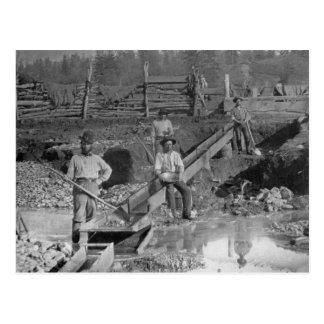De Gouden SpoedMijnwerkers ~ Californië 1850 van Briefkaart