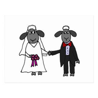 De grappige Cartoon van het Huwelijk van Schapen Briefkaart