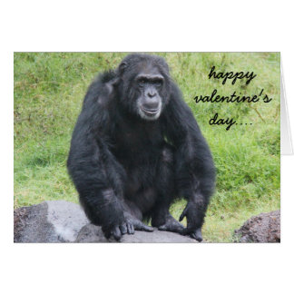 De grappige Chimpansee Valentijn, wil rond aan Kaart