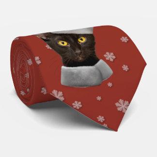 De grappige Kat van de Kerstman van Kerstmis Dassen
