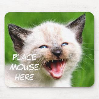 De grappige Muis van de Plaats van het Katje van d Muismat