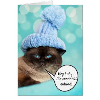 De grappige sexy insinuatie stelt kattenKerstmis Briefkaarten 0