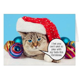 De grappige sexy postballen van kattenKerstmis Briefkaarten 0