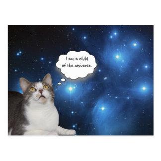 De grappige Ster Gazer van de Kat Briefkaart