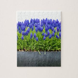 De grijze doos van de metaalbloem met blauwe foto puzzels