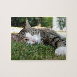De grijze en Witte Dagdromen van de Kat van de Puzzel