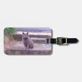 De grijze Kat van Buren Kofferlabel