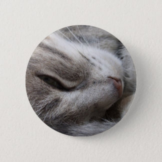 De grijze Knoop van de Kat Ronde Button 5,7 Cm
