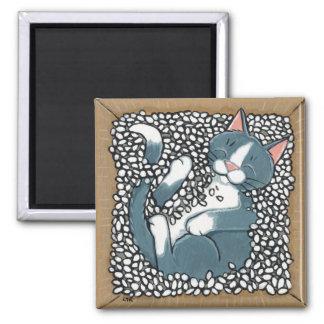 De grijze Slaap van de Kat van de Smoking in Doos  Vierkante Magneet