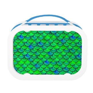 De Groenachtig blauwe Schalen van Falln Lunchbox