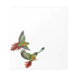De groene Blocnote van de Papegaaien van Conure