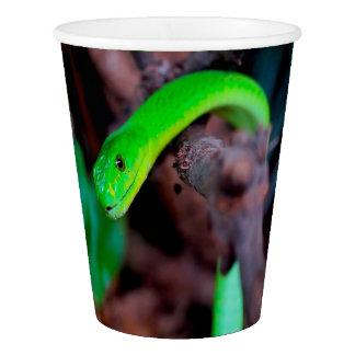 De groene Python van de Slang Papieren Bekers