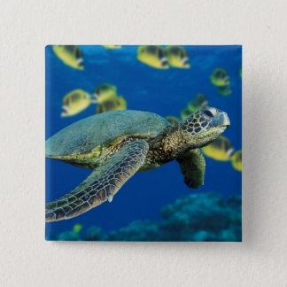 De groene Schildpad van het Zee Vierkante Button 5,1 Cm