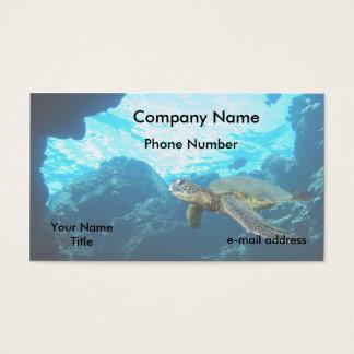 De groene Schildpad van het Zee Visitekaartjes