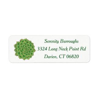 De Groene Succulente Cactus van het zuidwesten Etiket