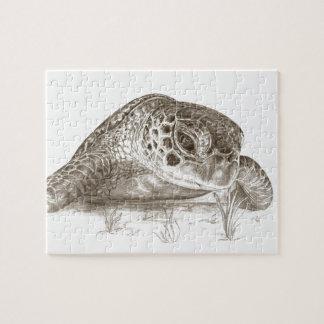 De groene Tekening van de Schildpad van het Zee Puzzel