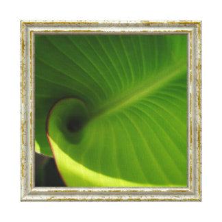 De groene Werveling van het Blad Canvas Afdruk