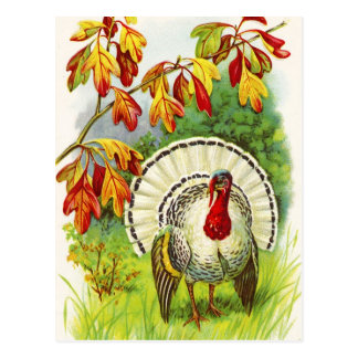 De Groeten van de Thanksgiving Briefkaart