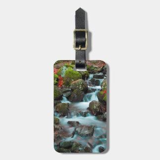 De grote Waterval van de Pezen van Cascades Bagagelabel