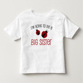 De Grote Zuster van het lieveheersbeestje om te Kinder Shirts