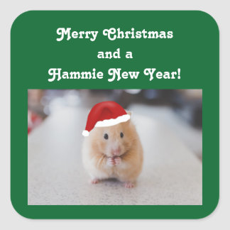 De Hamster van Kerstmis Vierkante Sticker