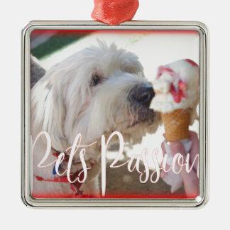 De Hartstocht van huisdieren Zilverkleurig Vierkant Ornament