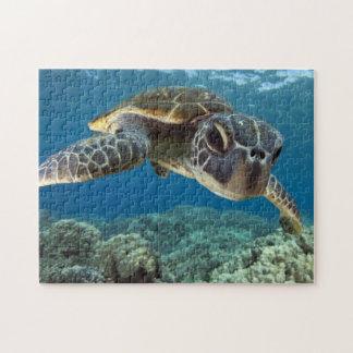 De Hawaiiaanse Groene Schildpad van het Zee Legpuzzel