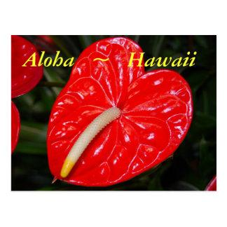 De Hawaiiaanse Rode Bloemen van de Anthurium Briefkaart