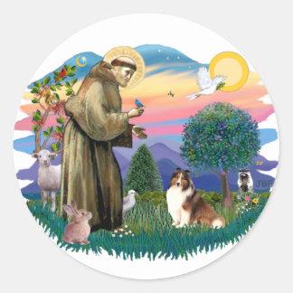 De Herdershond van Shetland (sabelmarter en wit) Ronde Sticker
