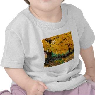 De herfst een Gouden Seizoen in New England Shirt