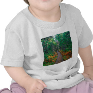 De herfst Fundy New Brunswick T Shirts