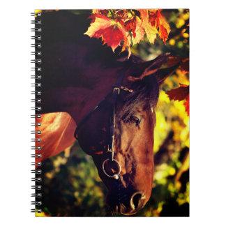 de herfst paard ringband notitieboek
