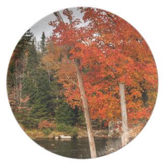 De Herfst van Adirondack Melamine+bord