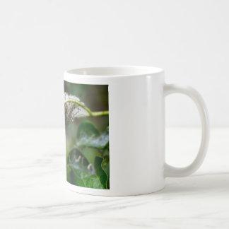 De Herfst van de Regen van de Cocon van het Koffiemok