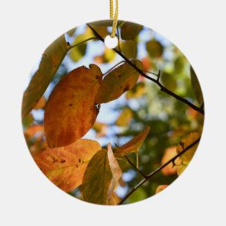De Herfst van de Stad van New York van het Park Rond Keramisch Ornament