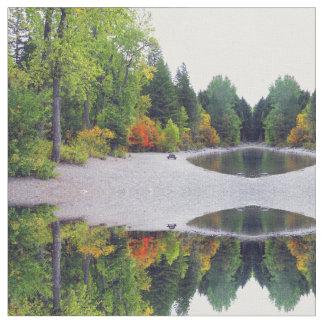 """De Herfst van Montana van de witte vis kleurt"""""""