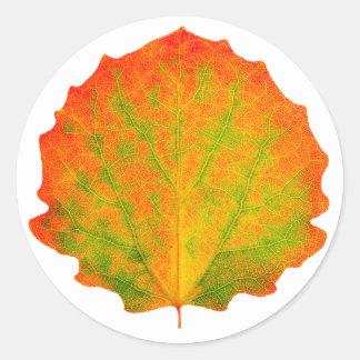 De herfstblad van de esp ronde sticker
