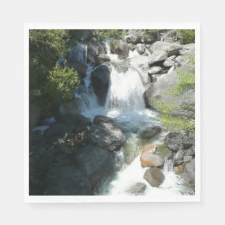 De Herfsten van de cascade bij Nationaal Park Papieren Servetten