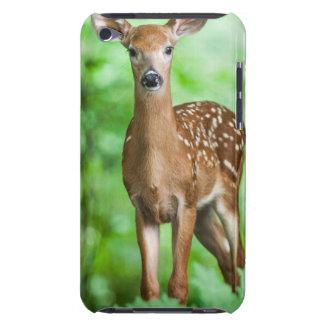 De Herten Fawn van het baby in het Bos iPod Touch Hoesje