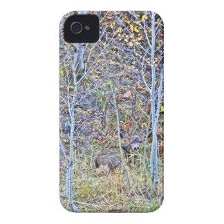 De herten van de damhinde en fawns iPhone 4 hoesje