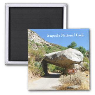 De het Nationale Park van de sequoia/Magneet van Magneet