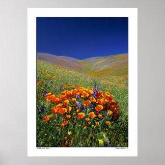 De Heuvels van Wildflower Poster