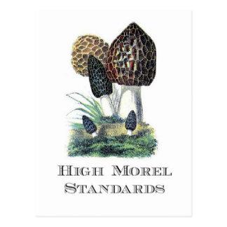 De hoge Normen van de Morille Briefkaart