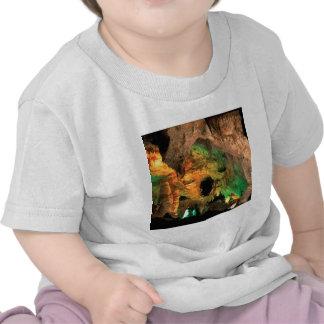 De Holen New Mexico van Carlsbad van het park Shirts