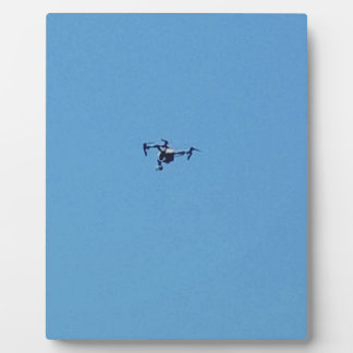 De Hommel van Hoovering tegen de Blauwe Eenvoud Fotoplaat