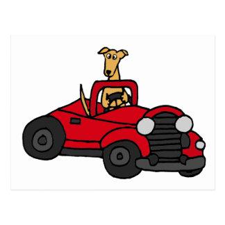 De Hond die van de Windhond van Fawn Rode Briefkaart