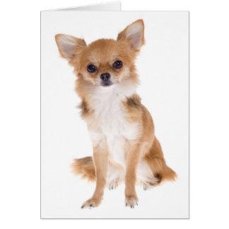 De Hond Lege Notecard van het Puppy van Chihuahua Notitiekaart