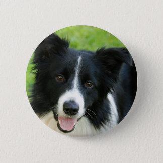 De Hond van border collie voegt het Huisdier van Ronde Button 5,7 Cm